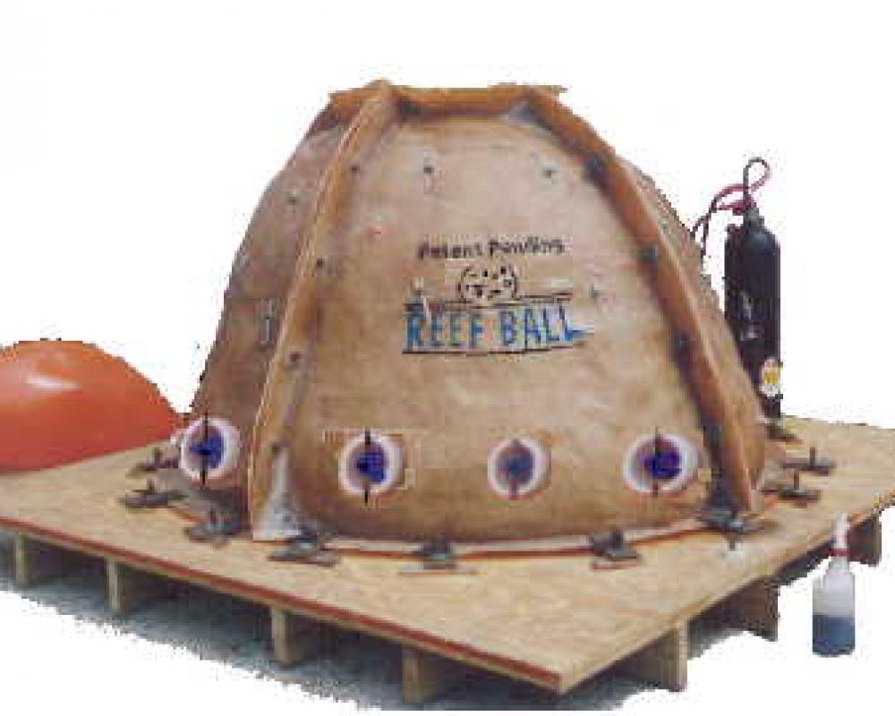 Reef Ball anclaje muelle